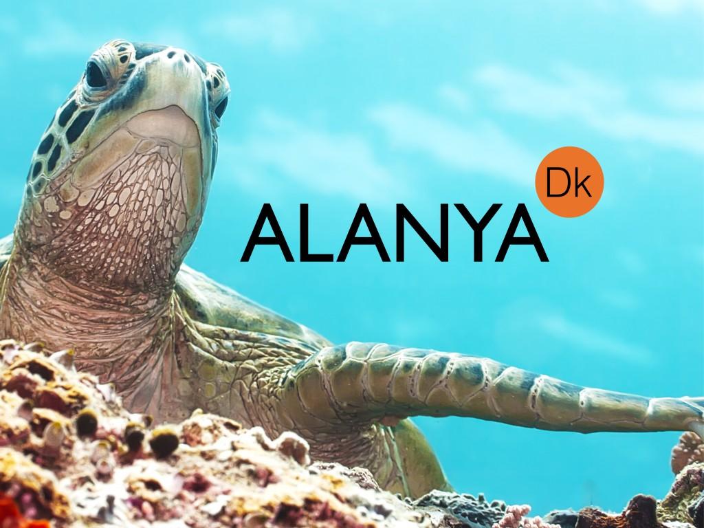 Alanya.Dk facebook, Fly til alanya, mest populære rejsemål, rejse til alanya, ferie i alanya. alanya.dk, fly, Tolk i alanya, tolk i Tyrkiet, tyrkisk tolk, Tyrkisk udtalelser, Dansk tyrkisk parlør, tyrkisk parlør, lær tyrkisk, tyrkiske udtalelser, snak tyrkisk, ord på tyrkisk, hvordan snakker man tyrkisk, tyrkisk sprogkursus