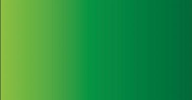 hellig islamisk farve, grøn er en hellig farve, farven grøn er hellig i islam