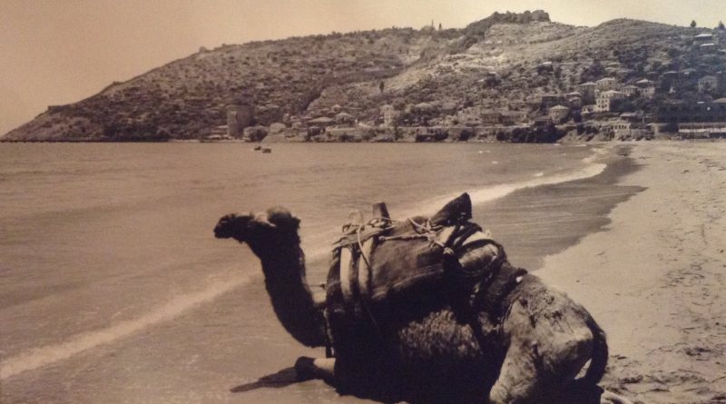 historien om alanya, alanyas historie, tyrkiets historie, historie fra Tyrkiet, alanya.dk, bøger om alanya, Alaeddin Keykubad, Alaeddin Keykubad statue, alanya historie