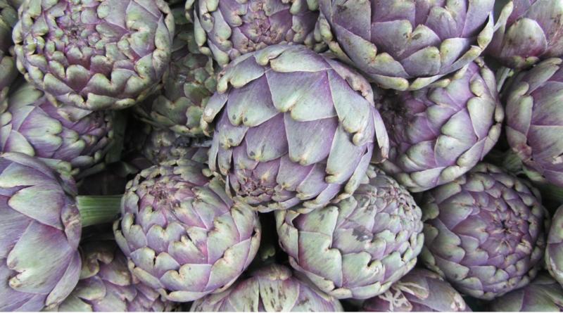 fakta om artiskokker, artiskokkers historie, alanya bazar, markedesdage i Alanya, grøntsager fra Alanya, næringindhold ad artiskokker