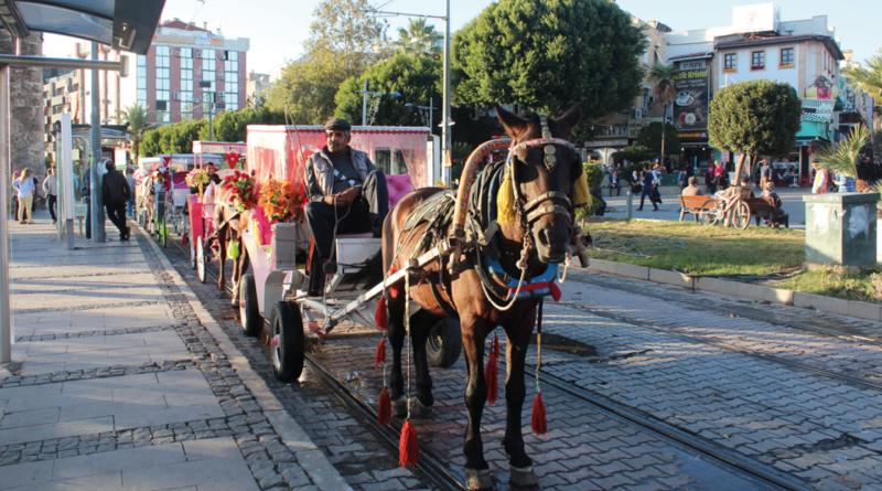 Hestevogne tyrkiet, tyrkiet hestevogne, alanya hestevogne, alanya heste, rejser til alanya, seværdigheder i alanya, nyheder fra tyrkiet, nyheder fra Alanya
