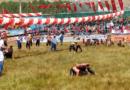 20-21 Juli: 15. Güres Oliebrydnings Festival i Gökbel