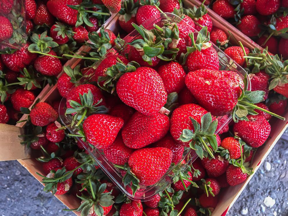 Friske jordbær, jordbær i Tyrkiet, tyrkiske jordbær, bazar i alanya, maj måned bazar i alanya, shopping i Alanya, Alanya shopping,