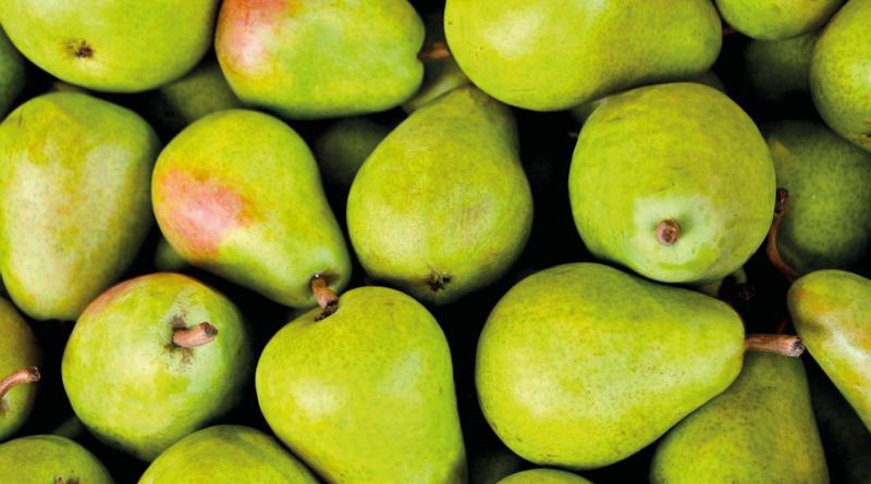 bazar i Alanya, Alanya bazar, markeder i Alanya, August, frugt og grønt fra Tyrkiet